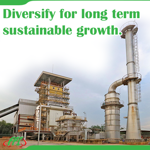 DIVERSIFY FOR LONG TERM SUSTAINABLE GROWTH
